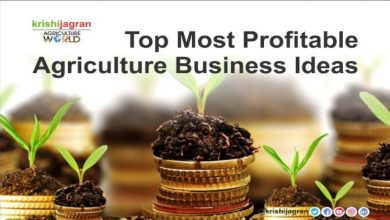 Photo of Farming: Is it a profitable business?