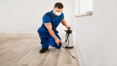 Photo of Which are 5 star rated pest control in Gauteng