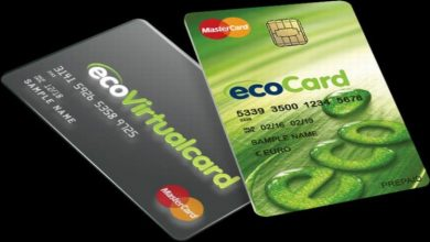 Photo of Ecopayz Virtual Card
