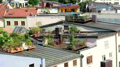 Photo of Stage By-Step Ideas You Can Utilize For Taking Care of Your Roof Top