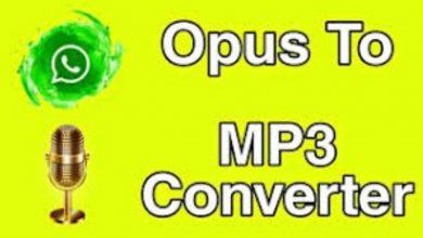 Photo of Mp3 opus converter