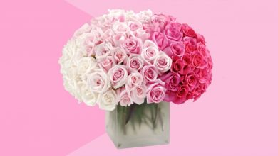 Photo of TIPS FOR CHOOSING THE RIGHT ONLINE FLOWER DELIVERY SERVICES