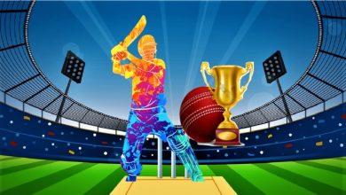 Photo of Fantasy Cricket
