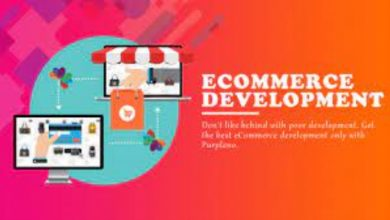 Photo of How To Know About Ecommerce Development Services