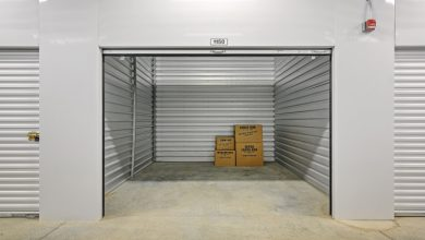 Photo of Which Items Require Climate Controlled Storage?
