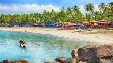 Photo of Why Should You Plan a Visit to Goa for a Holiday?