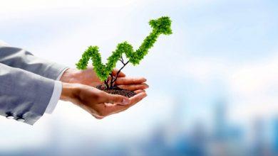 Photo of Empresas verdes: Beneficios y sustentabilidad para todos