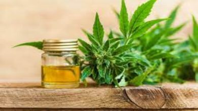 Photo of How to start your Own CBD business