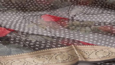 Photo of How to identify and buy pure Organza Sarees